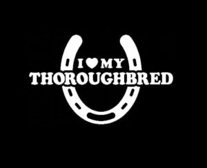 Love My Thoroughbred Decal Sticker - https://customstickershop.us/product-category/animal-stickers/