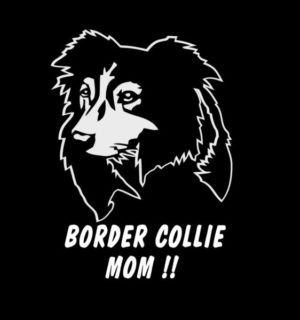 Border Collie Mom Dog Stickers