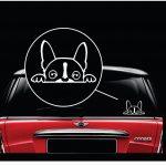Boston Terrier Peeking Dog Decal - Dog Stickers
