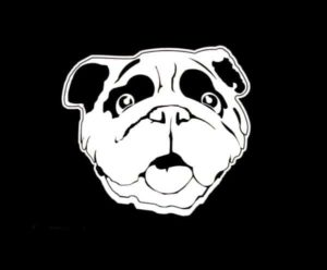 English Bulldog Head Decal Sticker - https://customstickershop.us/product-category/animal-stickers/