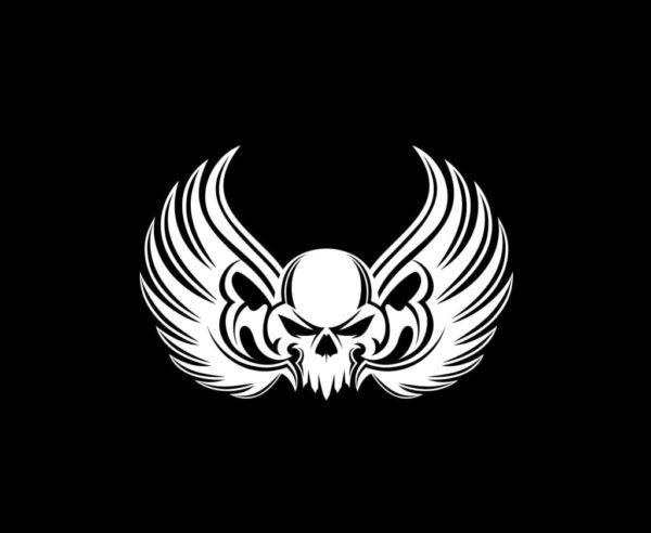 Winged Skull Vinyl Decal Stickers - Window decal sticker