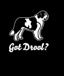 Got Drool St Bernard Dog Stickers