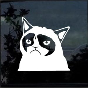 grumpy cat decal sticker