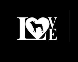 Love Boston Terrier Decal Sticker - https://customstickershop.us/product-category/animal-stickers/