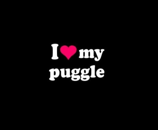 Love My Puggle Pet Decal Sticker - https://customstickershop.us/product-category/animal-stickers/