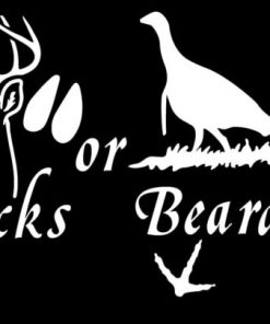Bucks or Beards Hunting Decal