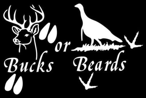 Bucks or Beards Hunting Decal