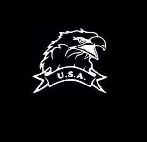 USA Eagle Window Decal Sticker - https://customstickershop.us/product-category/stickers-for-cars/