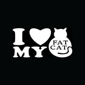 I Love my Fat Cat Stickers