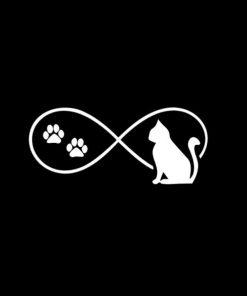 Cat Infiniy Decal Sticker