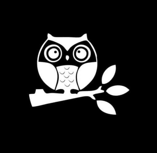 Owl on branch Decal Sticker