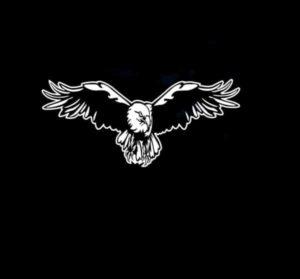 Soaring Eagle Decal sticker