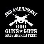 2nd Amendment God Guns Guts Window Decal Sticker