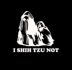 I Shih Tzu Not Shihtzu decal Sticker