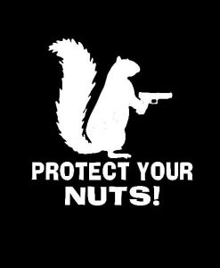 Protect your nuts funny Decal Sticker