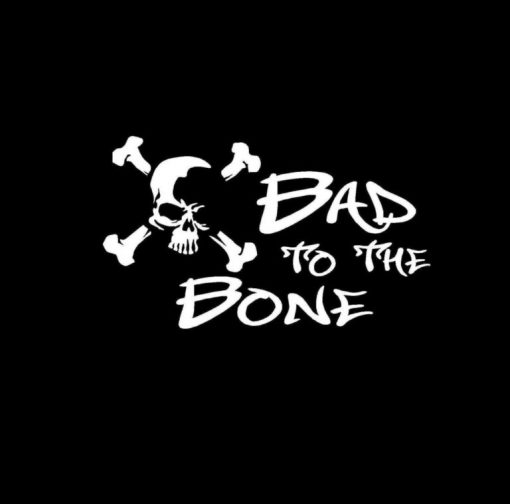 Bad To The Bone Skull Vinyl Decal Stickers