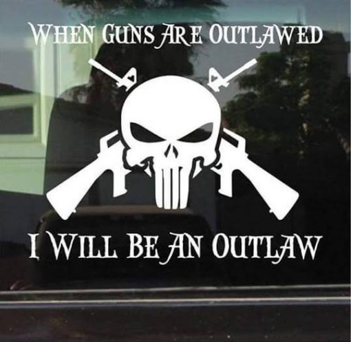 Punisher Outlaw AR Vinyl Decal Sticker