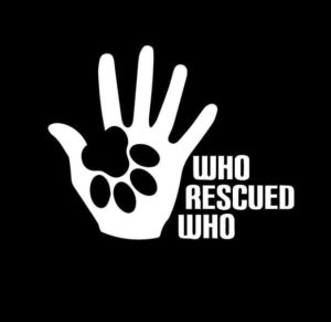 Who Rescued Who Dog Paw Hand Vinyl Decal Stickers