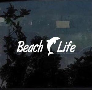 beach life dolphin2