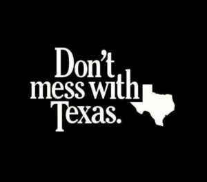 Dont Mess With Texas Vinyl Decal Sticker