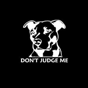 Don't Judge me pitbull pit bull Vinyl Decal Stickers