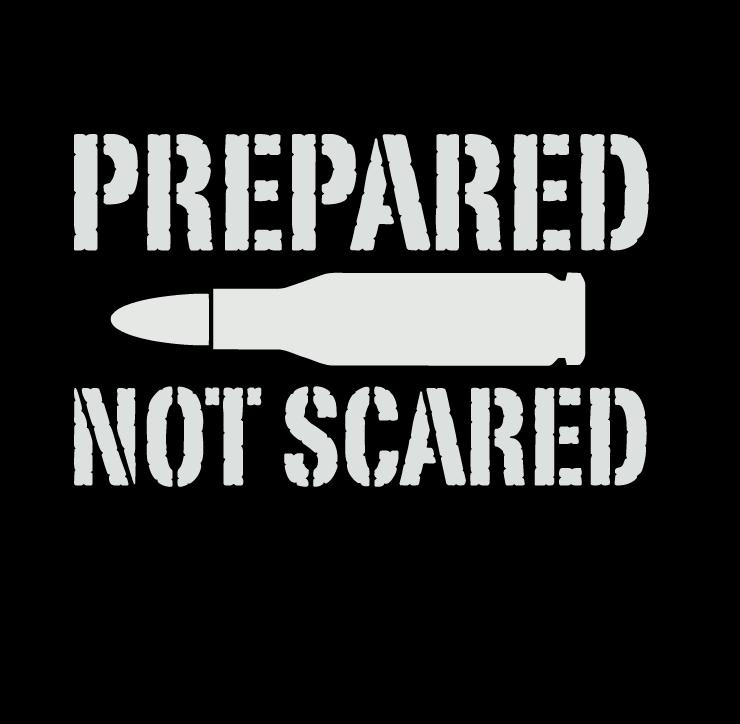 Prepared Not Scared Bullet Vinyl Decal Sticker