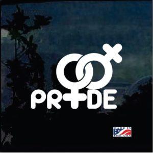 Gay Lesbian Pride Decal Sticker