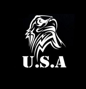 USA Eagle Head Vinyl Decal Stickers