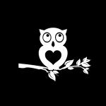 Owl Owls Window Decal Sticker A2