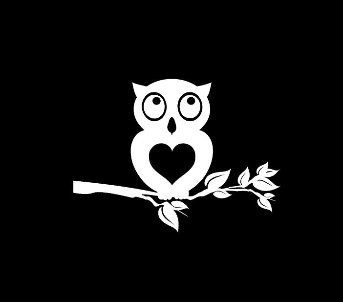 Owl Owls Vinyl Decal Stickers a2