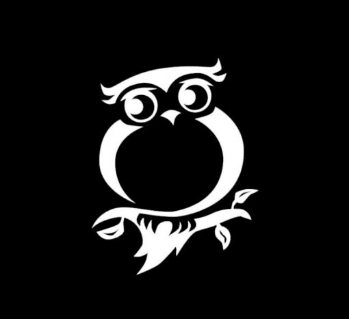 Owl Owls Vinyl Decal Stickers a3
