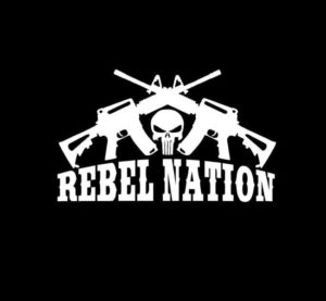 Punisher Rebel Nation Crossed Ar Vinyl Decal Stickers