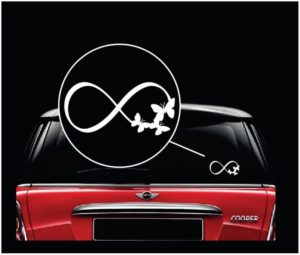 Infinity Butterflies window decal sticker