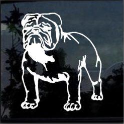 Bulldog Decal Sticker a2