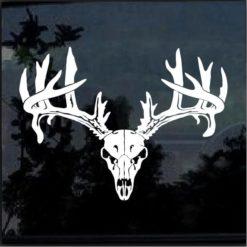 Deer Buck Skull Antlers Hunting Sportsman Decal Sticker