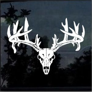 Deer Buck Skull Antlers Hunting Sportsman Decal Sticker