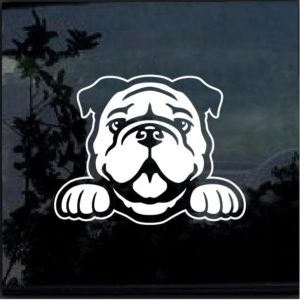 Bulldog Peeking Window Decal Sticker