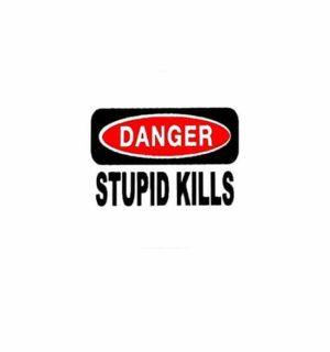 Hard hat stickers - Danger Stupid Kills