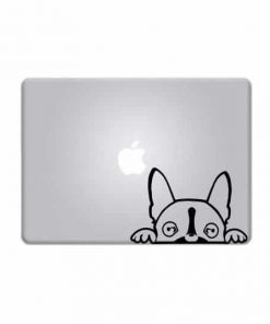 Laptop Stickers - Boston Terrier - Decal