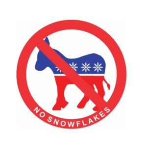 Cool Stickers - No Snowflakes Decal