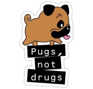 cool stickers - Pugs Not Drugs decal