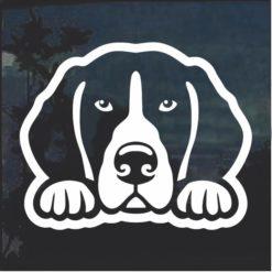 Beagle Peeking Dog Window Decal Sticker