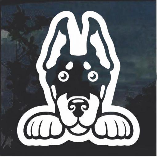 Doberman Pinscher Peeking Dog Window Decal Sticker