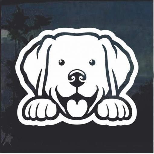 Labrador Retriever Peeking Dog Window Decal Sticker