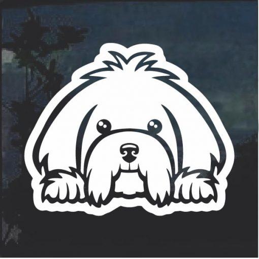 Maltese Peeking Dog Window Decal Sticker