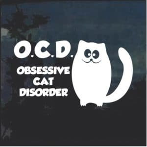 OCD Obsessive Cat Disorder Window Decal Sticker