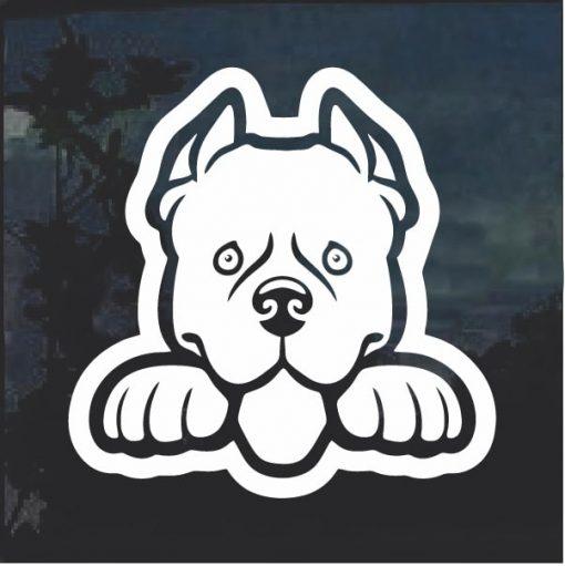 Pit bull Peeking Dog Window Decal Sticker