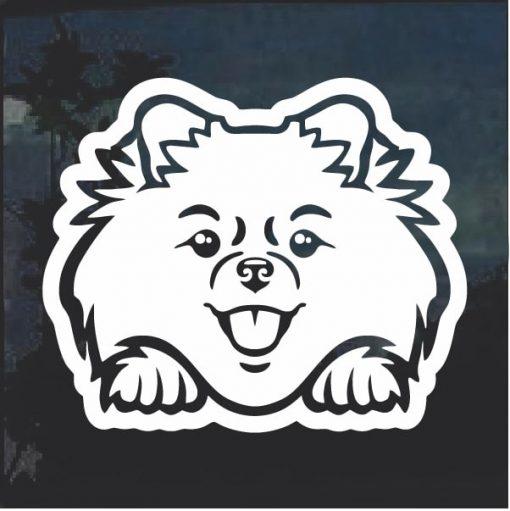 Pomeranian Peeking Dog Window Decal Sticker