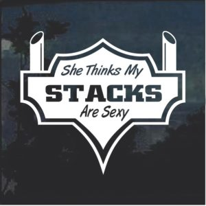She Thinks My Stacks Are Sexy v2 Window Decal Sticker