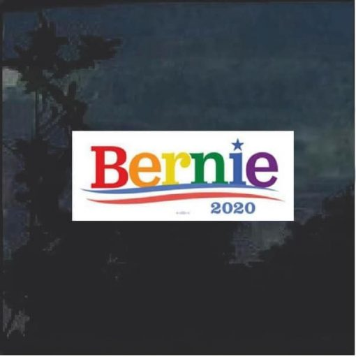 Bernie 2020 Color window decal bumper sticker